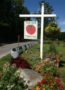 Tomatoes Sign at Cucurbit Farm