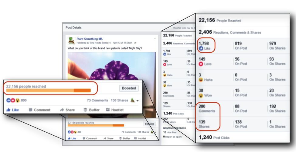 Example of facebook insights
